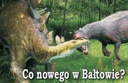 (Wycieczka szkolna) Bałtowski Park Jurajski, 1 dzień / NA ZAPYTANIE DLA GRUP